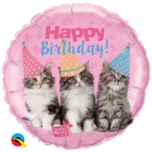 Karte Geburtstag Motiv Katze Baum Des Lebens Geburtstagskarten