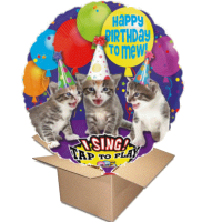 Ballongruss Singener Ballon Happy Birthday Miau