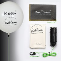 moon balloon set
